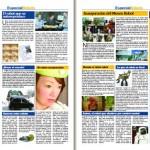 Elsingular-PDF-4